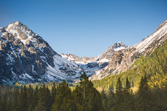 Sunny Mountain Scenery Stockbild