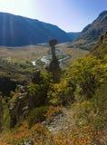 Sunny mountain valley Royalty Free Stock Photo