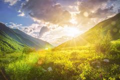 Sunny mountains landscape. Mountain range and yellow sunlight on grassy hills. Amazing sunset in highlands. Svaneti nature scenery. Vivid sun over beautiful Royalty Free Stock Image