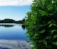 sunny nad jezioro zdjęcia stock