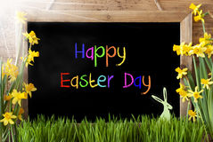 Sunny Narcissus, Bunny, Colorful Text Happy Easter Day Royalty Free Stock Image