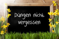 Sunny Narcissus, Chalkboard, Duengen Nicht Vergessen Means Not Forget Dung Stock Photography