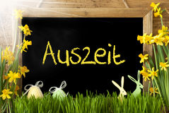 Sunny Narcissus, Easter Egg, Bunny, Auszeit Means Downtime Stock Image