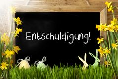 Sunny Narcissus, Easter Egg, Bunny, Entschuldigung Means Excuse. Blackboard With German Text Entschuldigung Means Excuse. Sunny Spring Flowers Nacissus Or Royalty Free Stock Photos