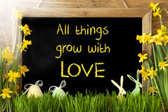 Sunny Narcissus, Easter Egg, Bunny, Quote All Things Grow Love Royalty Free Stock Photo