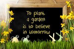 Sunny Narcissus, Easter Egg, Bunny, Quote Plant Garden Believe Tomorrow. Blackboard With English Quote To Plant A Garden Is To Believe In Tomorrow. Sunny Spring Stock Photography