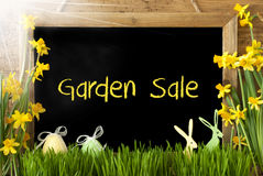 Sunny Narcissus, Easter Egg, Bunny, Text Garden Sale Royalty Free Stock Photos