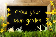 Sunny Narcissus, Easter Egg, Bunny, Text Grow Your Own Garden Royalty Free Stock Image