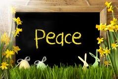 Sunny Narcissus, oeuf de pâques, lapin, paix des textes Photo libre de droits