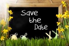 Sunny Narcissus, uovo di Pasqua, coniglietto, risparmi bianchi del testo la data Immagini Stock Libere da Diritti