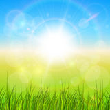 Sunny natural background. With vector sun and grass Royalty Free Stock Image
