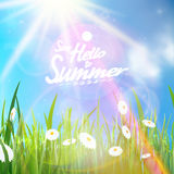 Sunny natural background with sun and grass. Royalty Free Stock Photos