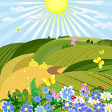 Sunny natural landscape Stock Image