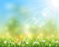 Sunny nature background. Sunny day, spring or summer nature background with grass and flowers, sun light on blue sky background, illustration Stock Photos