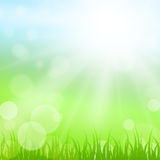 Sunny nature background Royalty Free Stock Photography