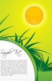 Sunny nature card. Illustration of sunny nature card Stock Photography