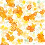 Sunny orange garden Royalty Free Stock Photo
