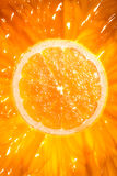 Sunny Orange grapefruit Cross Section Stock Photography