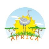 Sunny Ostrich illustrazione vettoriale