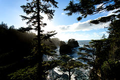 Sunny Pacific Northwest Coastline with Rocky Islands and Pine Trees Stock Photography