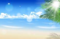 Sunny Palm Beach Fotografie Stock