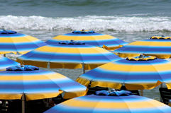 Sunny parasol Royalty Free Stock Images