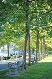 Sunny Park Day Stock Image