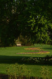 Sunny park with flower garden, trees, bench Stock Photo