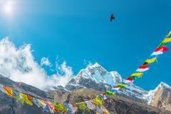 Sunny Peak View dans les drapeaux et la corneille bouddhistes de montagnes de l'Himalaya Photographie stock libre de droits