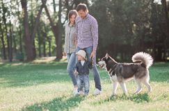 Sunny pictures of a happy married couple with a dog and a child. Lie on the grass, the sun is shining stock photo