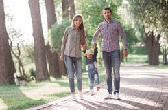 Sunny pictures of a happy married couple with a dog and a child. Lie on the grass, the sun is shining royalty free stock images