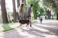 Sunny pictures of a happy married couple with a dog and a child. Lie on the grass, the sun is shining stock image
