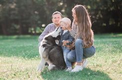 Sunny pictures of a happy married couple with a dog and a child. Lie on the grass, the sun is shining royalty free stock photo