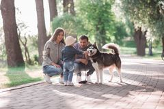 Sunny pictures of a happy married couple with a dog and a child. Lie on the grass, the sun is shining stock photography