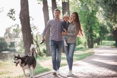 Sunny pictures of a happy married couple with a dog and a child. Lie on the grass, the sun is shining stock images