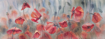 Sunny poopies field. Watercolor flowers poppies field in the sun Stock Photography