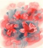 Sunny poppy field watercolor Royalty Free Stock Image