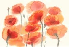 Sunny poppy field watercolor Stock Photography