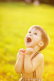 Sunny portrait of child. Adorable happy boy looking up and rejoining royalty free stock images