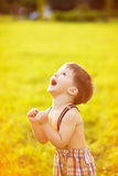 Sunny portrait of child. Adorable happy boy looking up and rejoining stock photography