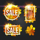 Sunny poster with glowing bright flash, colorful chestnut leaves background in rectangular white frame with promo info Stock Photo