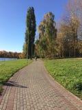 Sunny promenade near the lake in the park stock image