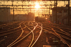 Sunny railway Royalty Free Stock Images
