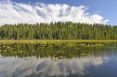 Sunny Reflections en un lago wilderness Imagen de archivo