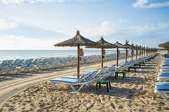 Sunny resort Stock Photography