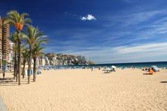 Sunny resort Royalty Free Stock Image