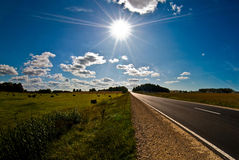 Sunny road. Road to the success and sunny future Royalty Free Stock Photos