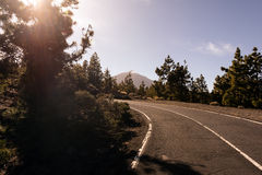 Sunny road at Teide National park on Tenerife island, Spain Royalty Free Stock Image
