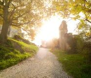 Sunny road Royalty Free Stock Photos