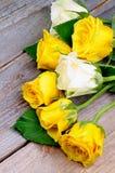 Sunny Roses Images libres de droits